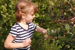 Joy looking for the best berries